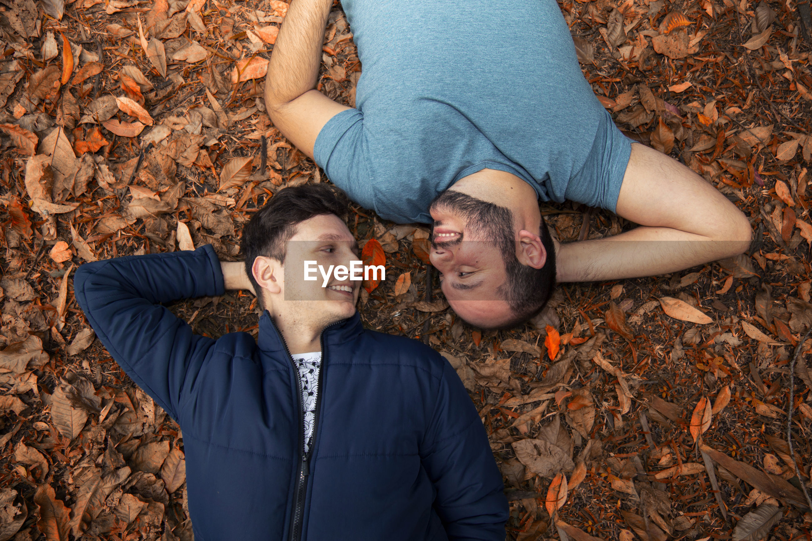 High angle view of gay men lying on field at park