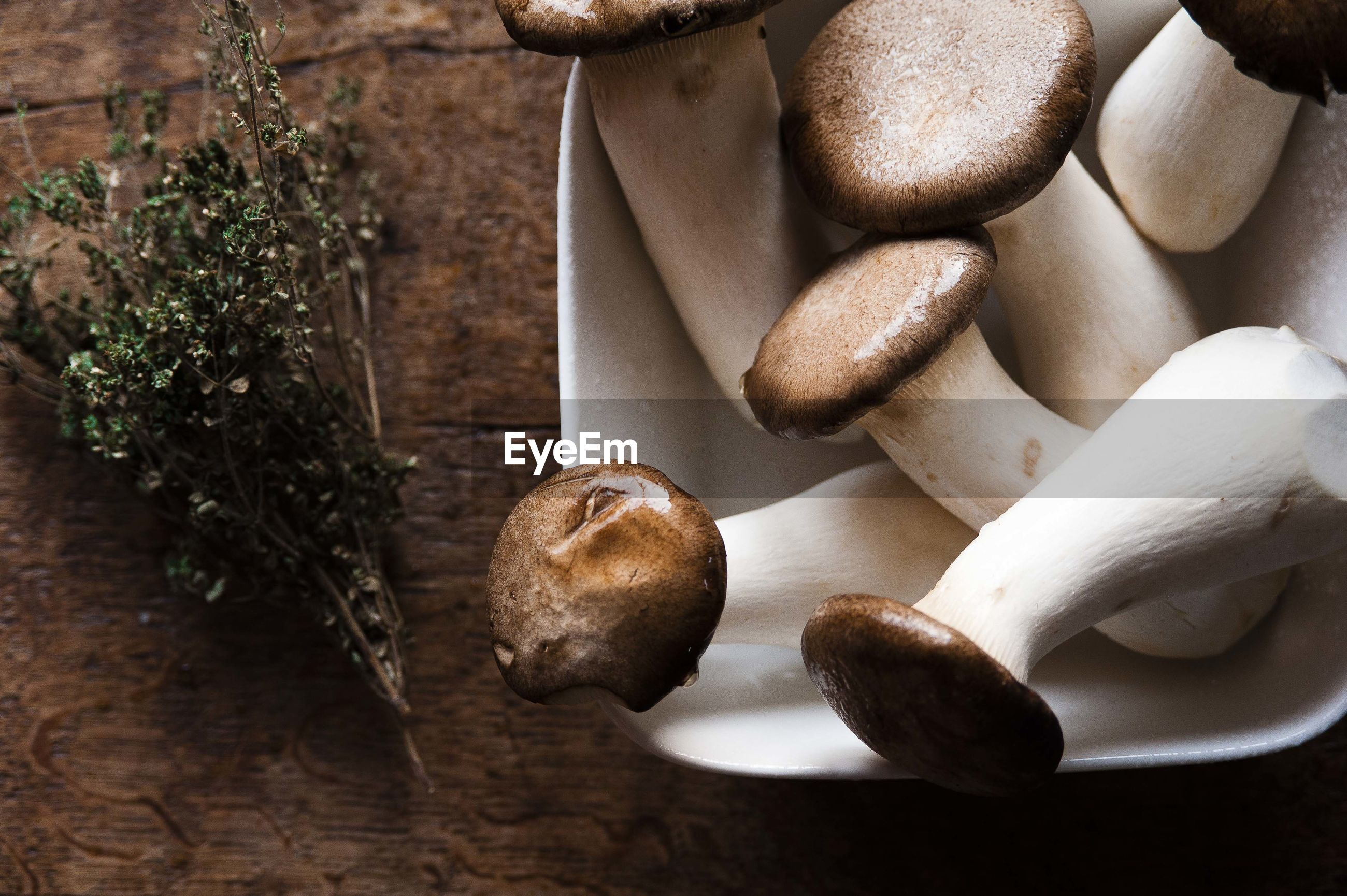 Close-up of boletus mushrooms in bowl