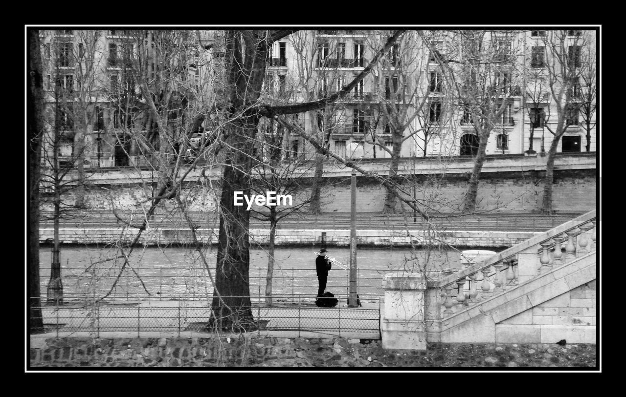 River amidst bare trees in city