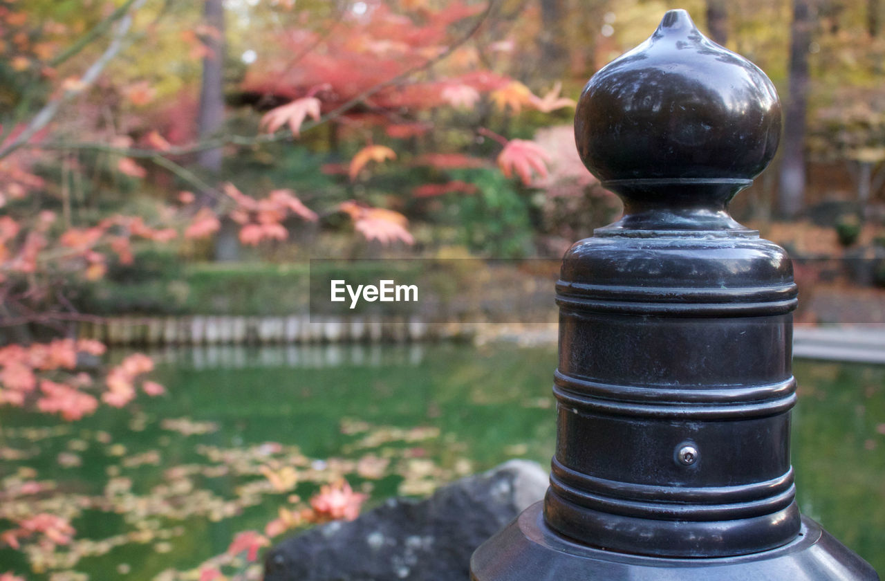 focus on foreground, no people, day, outdoors, close-up, water