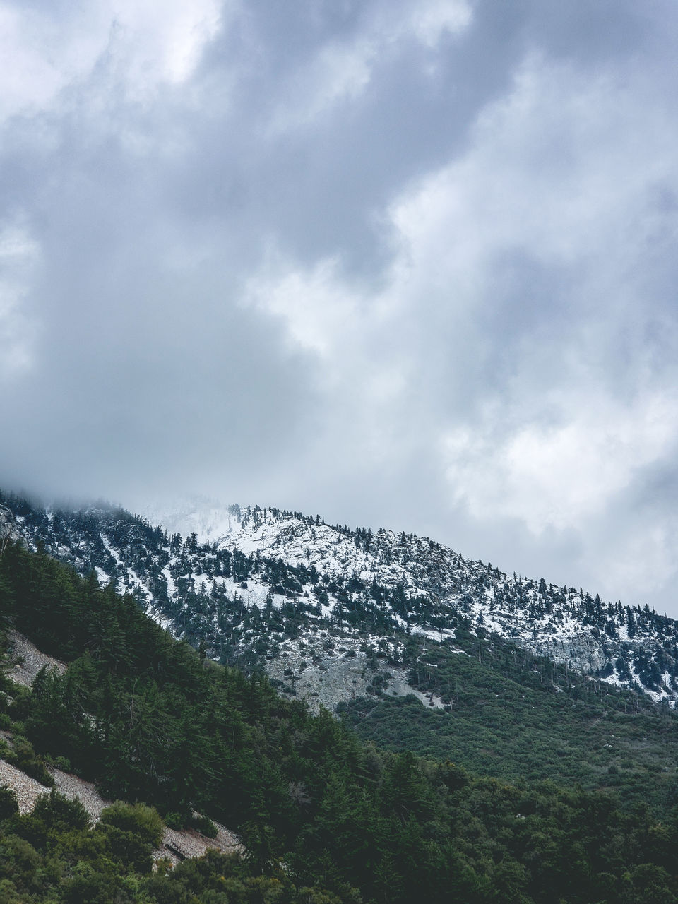 cloud - sky, sky, beauty in nature, mountain, scenics - nature, snow, tranquil scene, tranquility, cold temperature, winter, environment, no people, nature, landscape, non-urban scene, day, outdoors, tree, plant, snowcapped mountain, mountain peak, mountain range, range