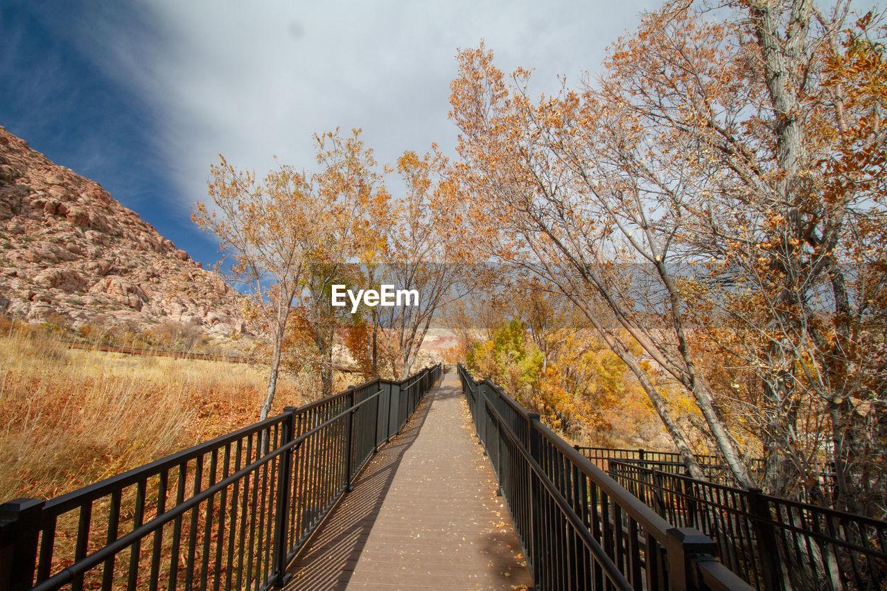 Footbridge amidst trees against sky during orange autumn cottonwood trees. red rock canyon, nevada
