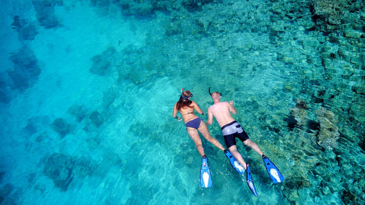 High Angle View Of Man And Woman Swimming In Sea