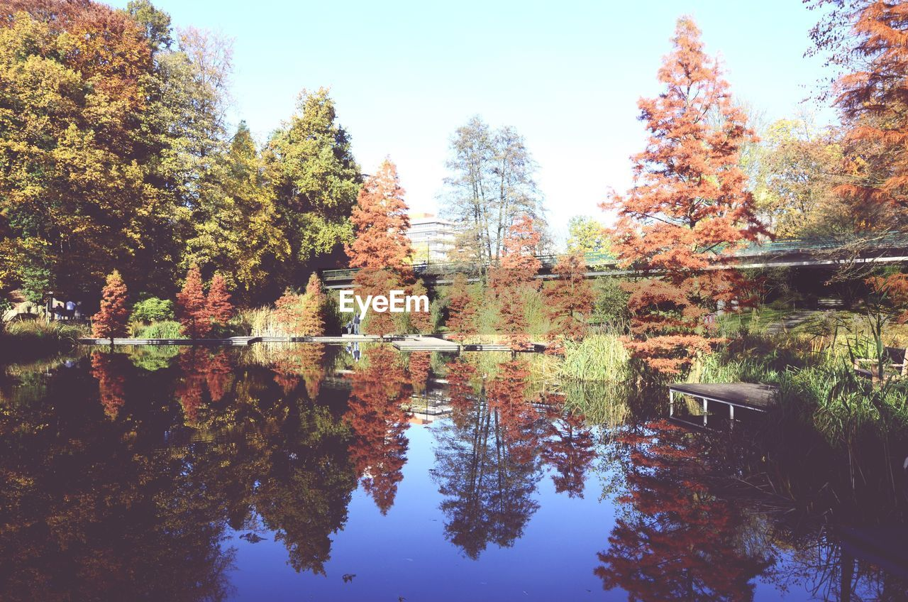 tree, autumn, reflection, nature, change, leaf, tranquil scene, lake, no people, day, tranquility, water, scenics, beauty in nature, outdoors, growth, forest, built structure, sky, architecture