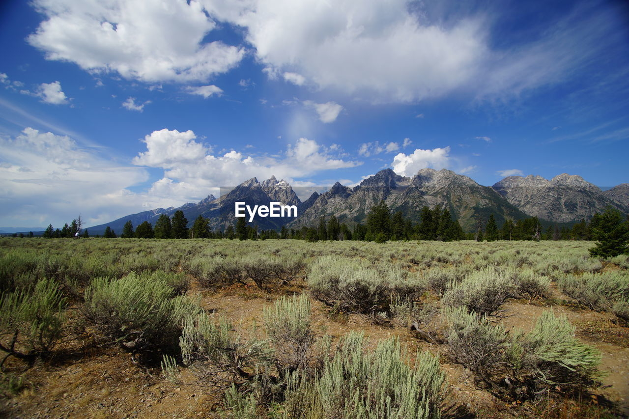 Scenic view of landscape and rocky mountains against cloudy sky during sunny day