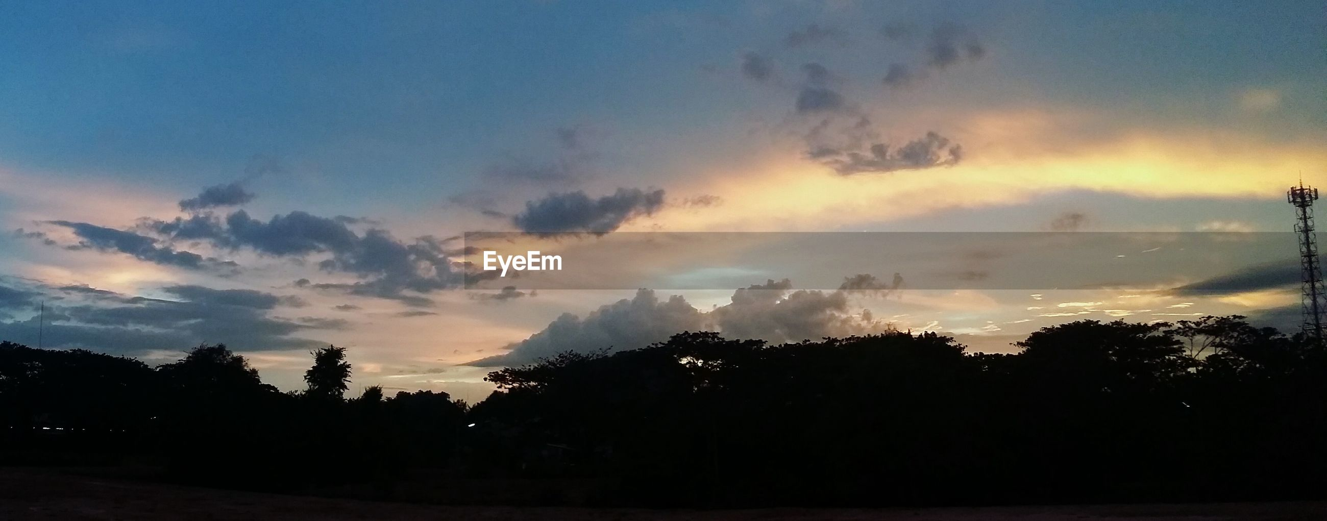 Panoramic shot of silhouette trees against sky at sunset
