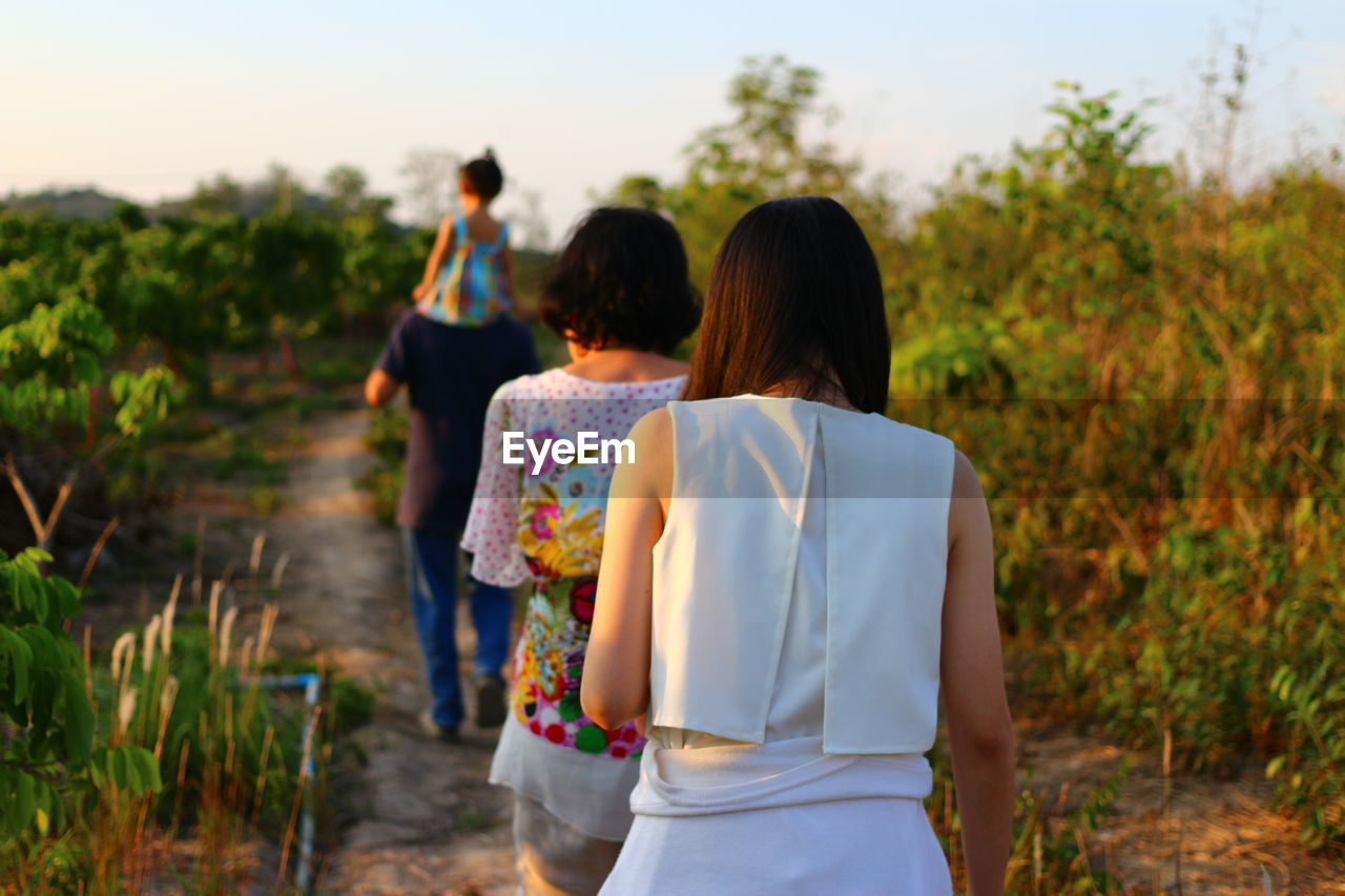 Rear view of family walking in field