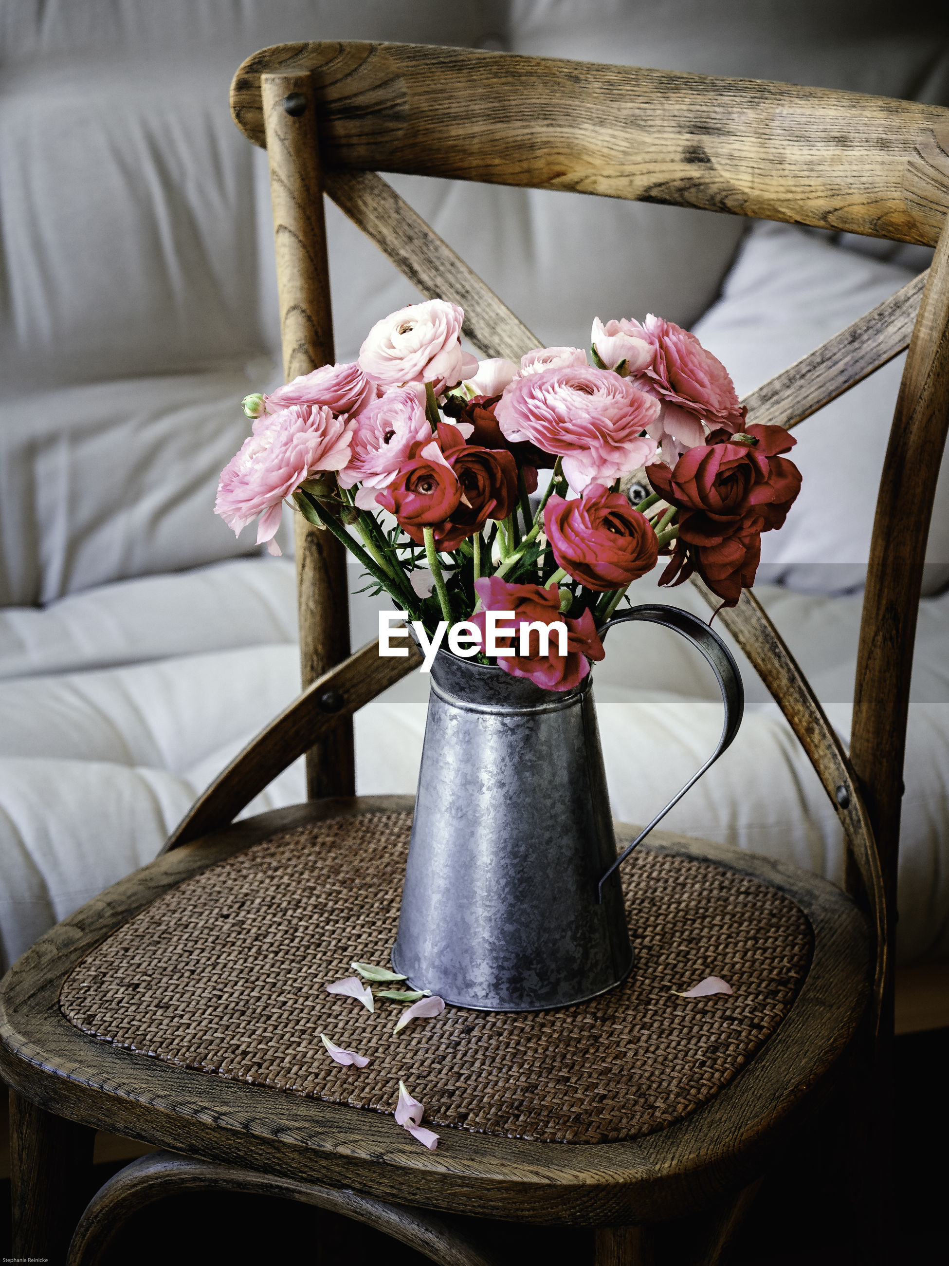 Close-up of roses in container on chair at home
