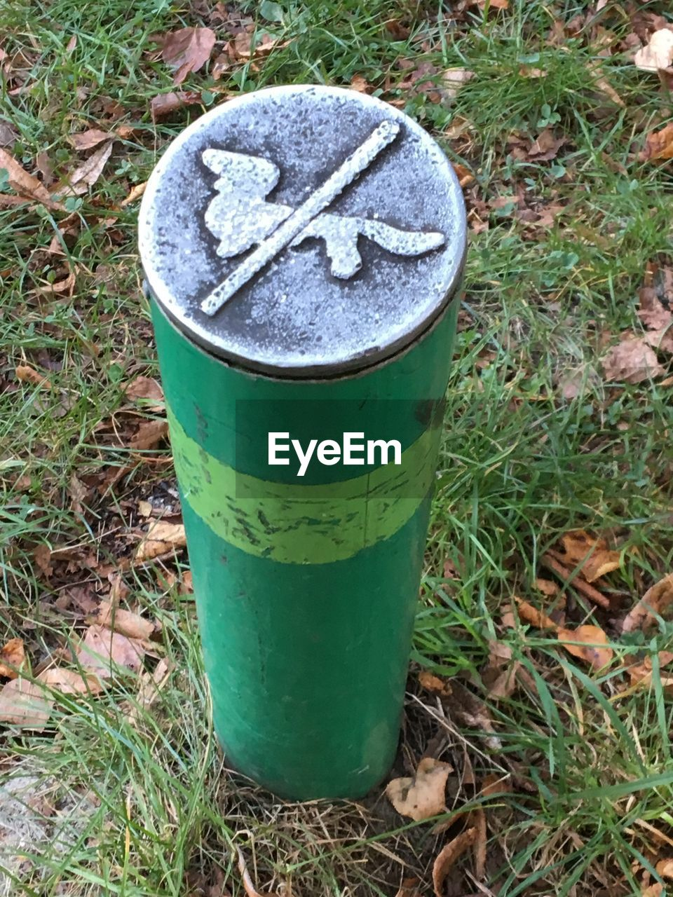 grass, land, day, green color, no people, field, high angle view, nature, plant, metal, container, outdoors, close-up, food and drink, bucket, growth, cylinder, old, leaf, drink