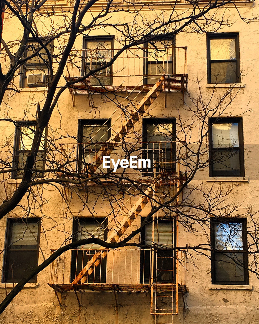 architecture, building exterior, built structure, steps and staircases, fire escape, window, staircase, damaged, no people, residential building, urgency, day, branch, tree, outdoors