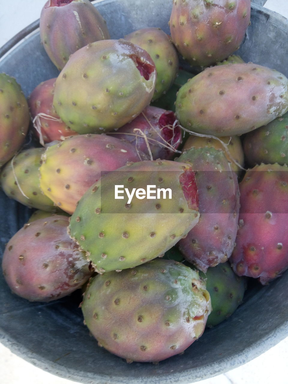 close-up, prickly pear cactus, food and drink, healthy eating, cactus, no people, green color, day, food, fruit, freshness, outdoors