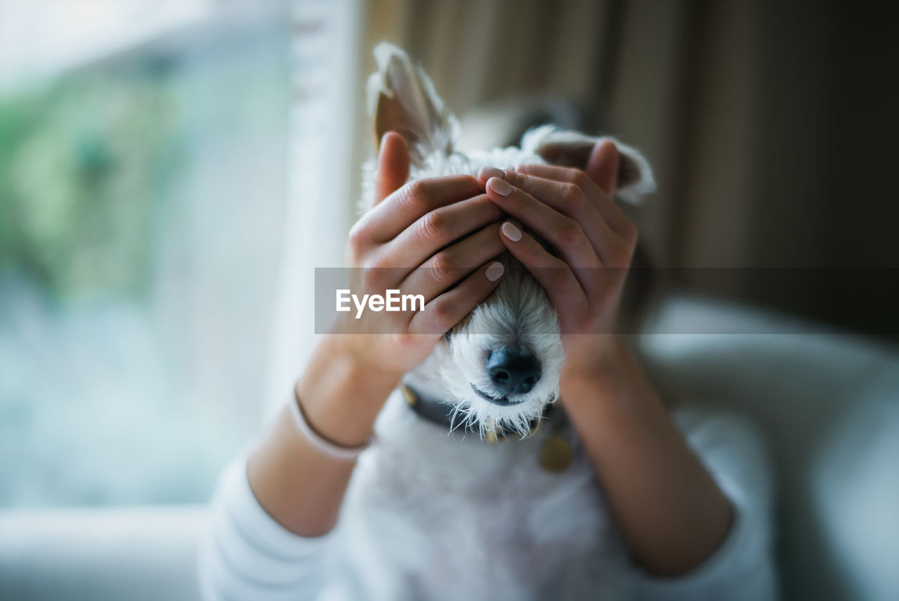 Close-Up Of Hands Covering Dog's Eyes