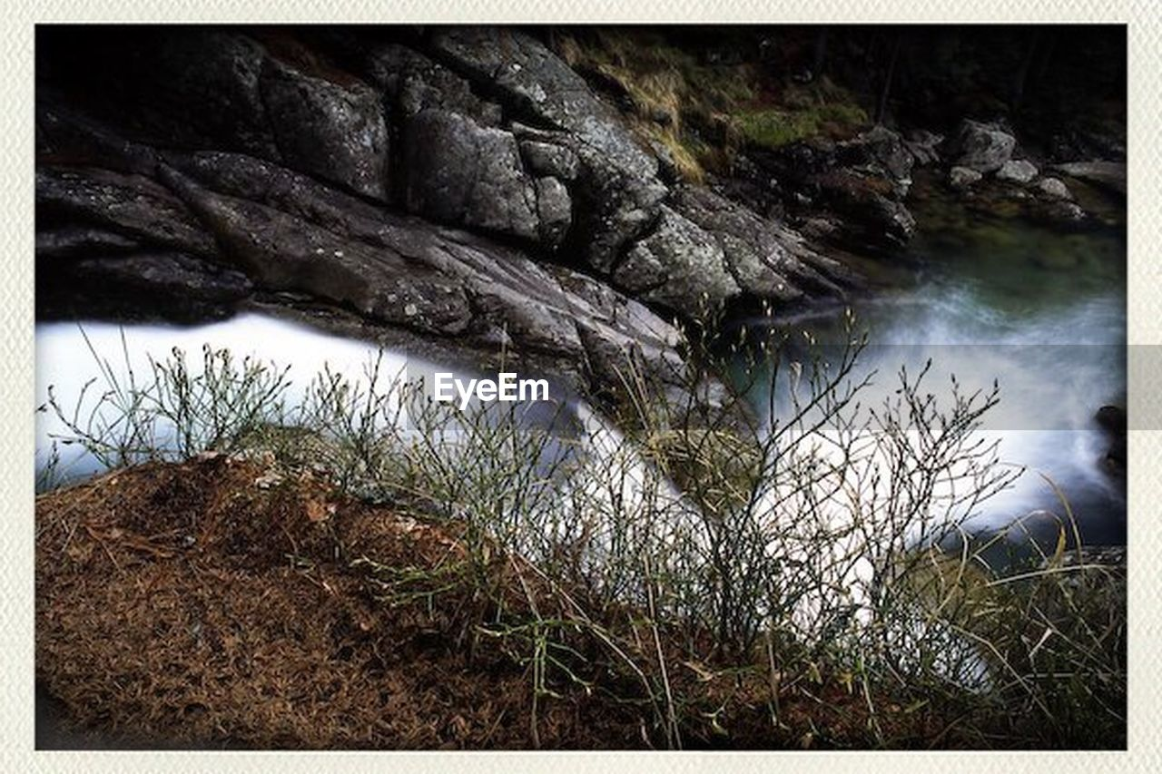 water, nature, tranquil scene, tranquility, rock - object, no people, beauty in nature, river, day, scenics, outdoors, riverbank, grass