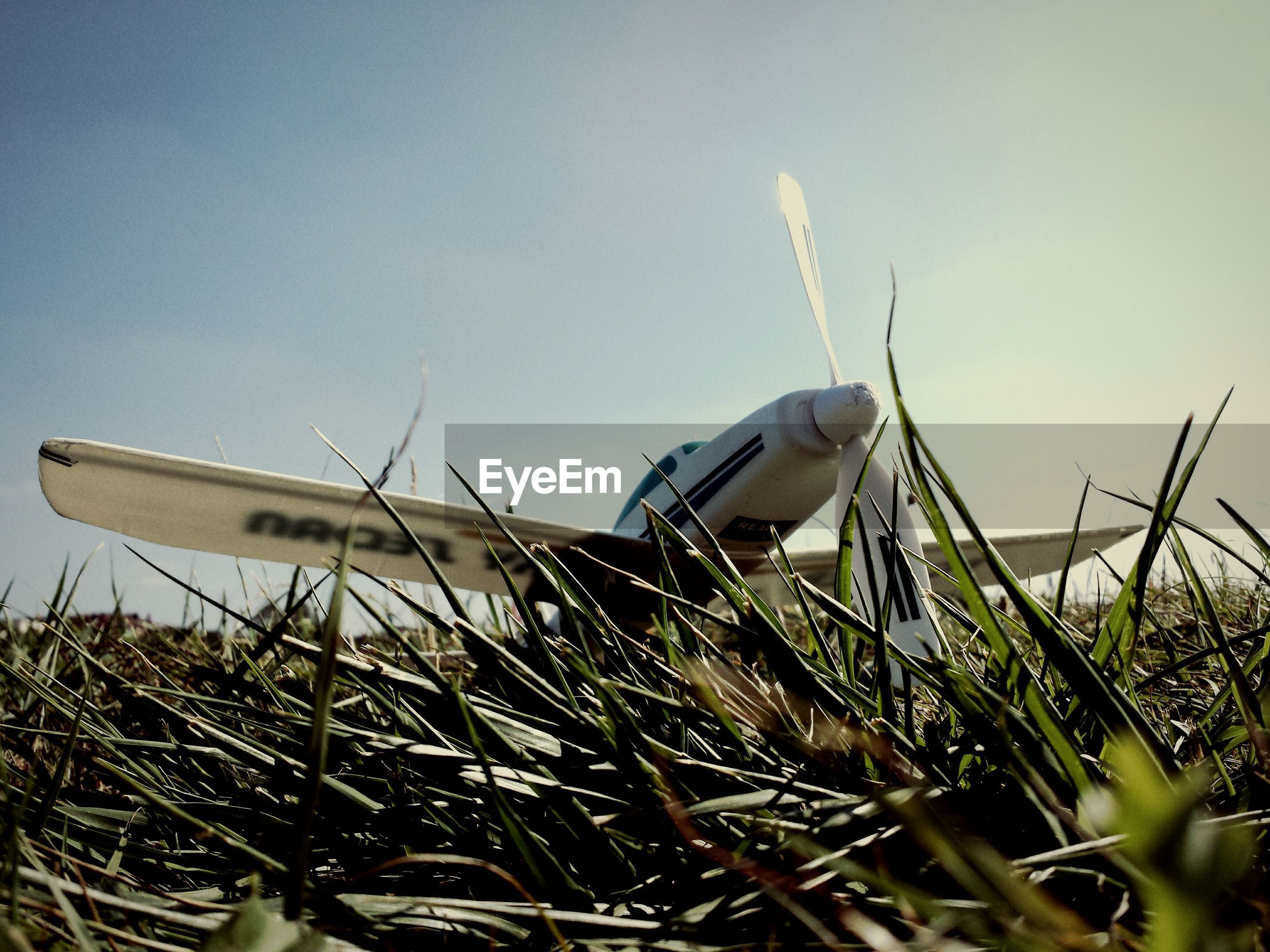 Close-up of grass by airplane against sky