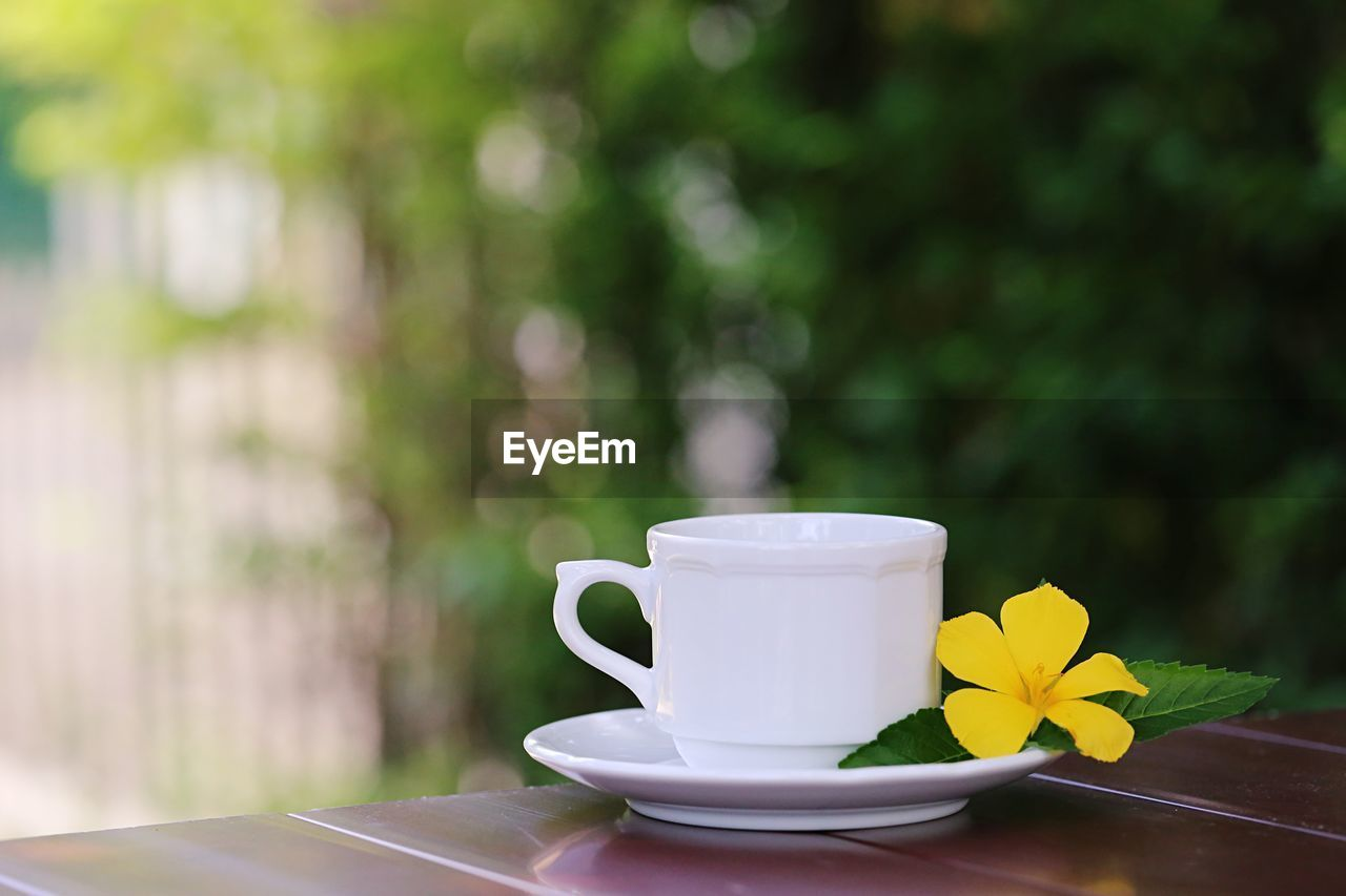 mug, cup, coffee cup, saucer, food and drink, drink, table, coffee, crockery, freshness, refreshment, coffee - drink, focus on foreground, still life, close-up, plant, no people, day, nature, yellow, hot drink, outdoors, tea cup