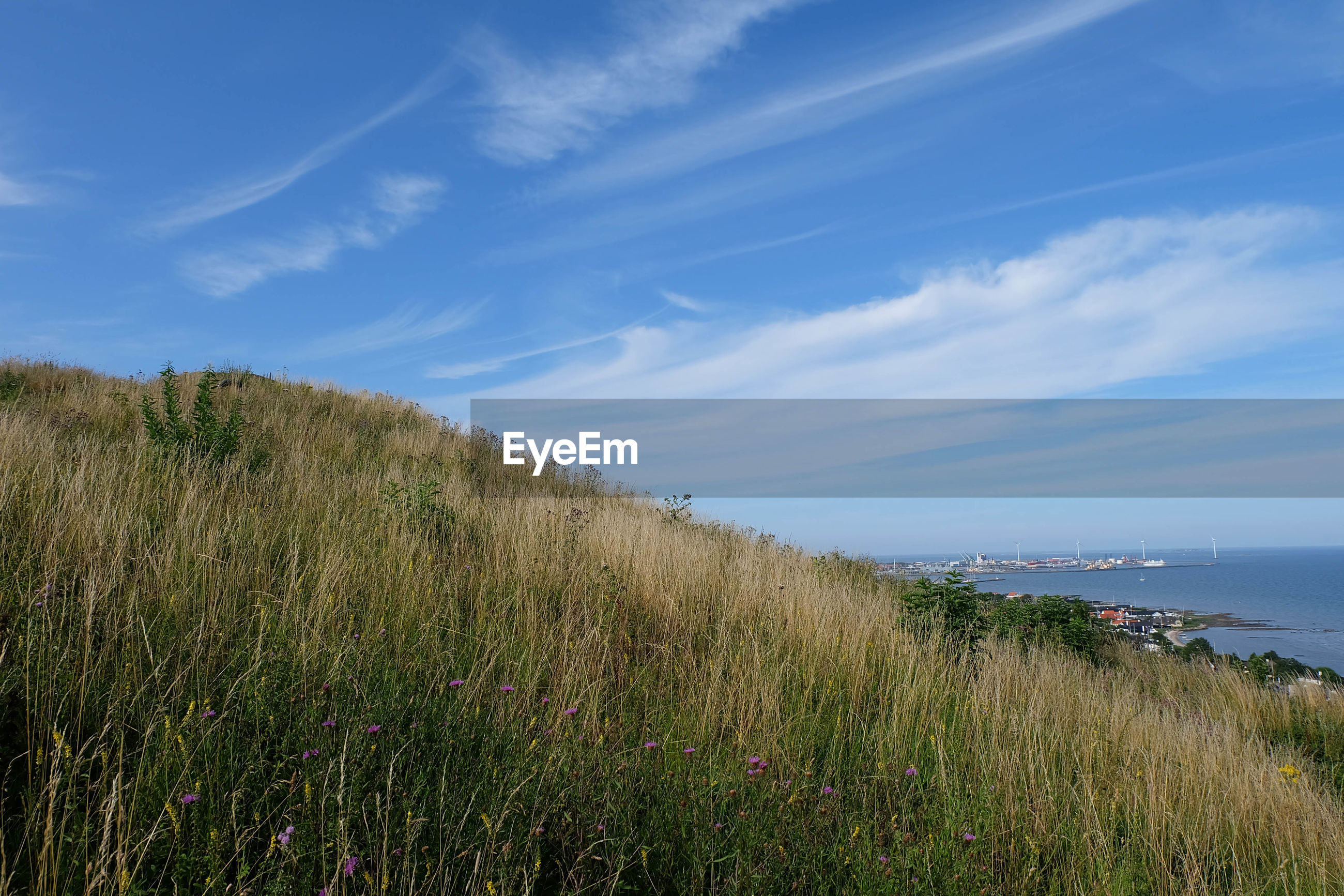 Scenic view of grassy hill by sea against blue sky