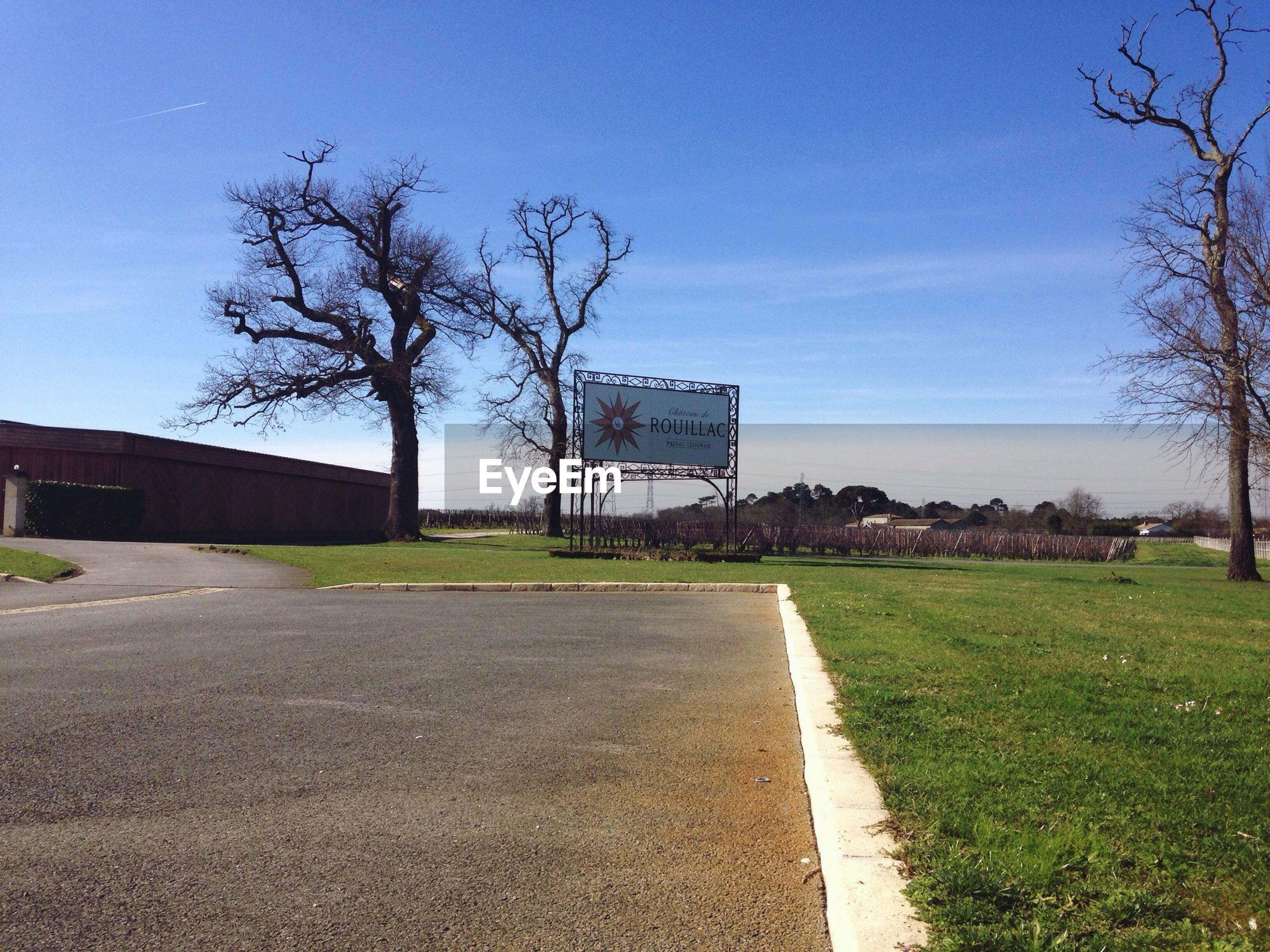 grass, the way forward, tree, road, sky, blue, diminishing perspective, building exterior, bare tree, built structure, clear sky, empty, field, transportation, architecture, vanishing point, empty road, long, grassy, lawn