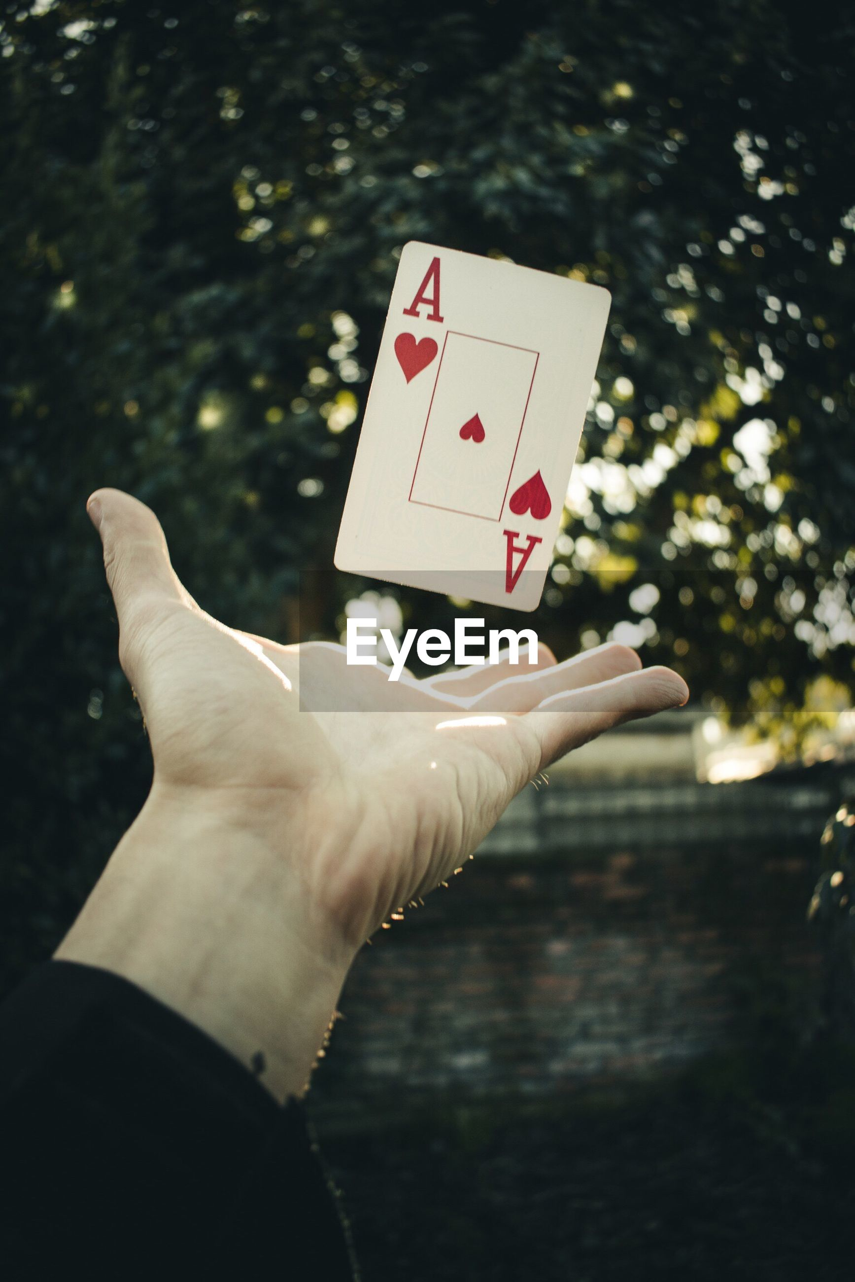 Cropped hand of man with levitating card against tree