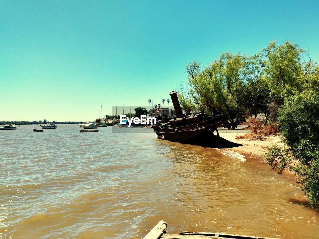nautical vessel, transportation, water, mode of transport, nature, tree, moored, day, outdoors, clear sky, scenics, beauty in nature, no people, sea, sky