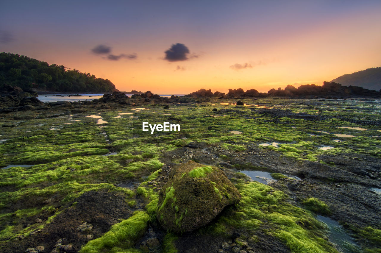 sunset, sky, scenics - nature, beauty in nature, tranquility, water, tranquil scene, land, nature, no people, non-urban scene, sea, moss, rock, solid, beach, idyllic, orange color, rock - object, outdoors