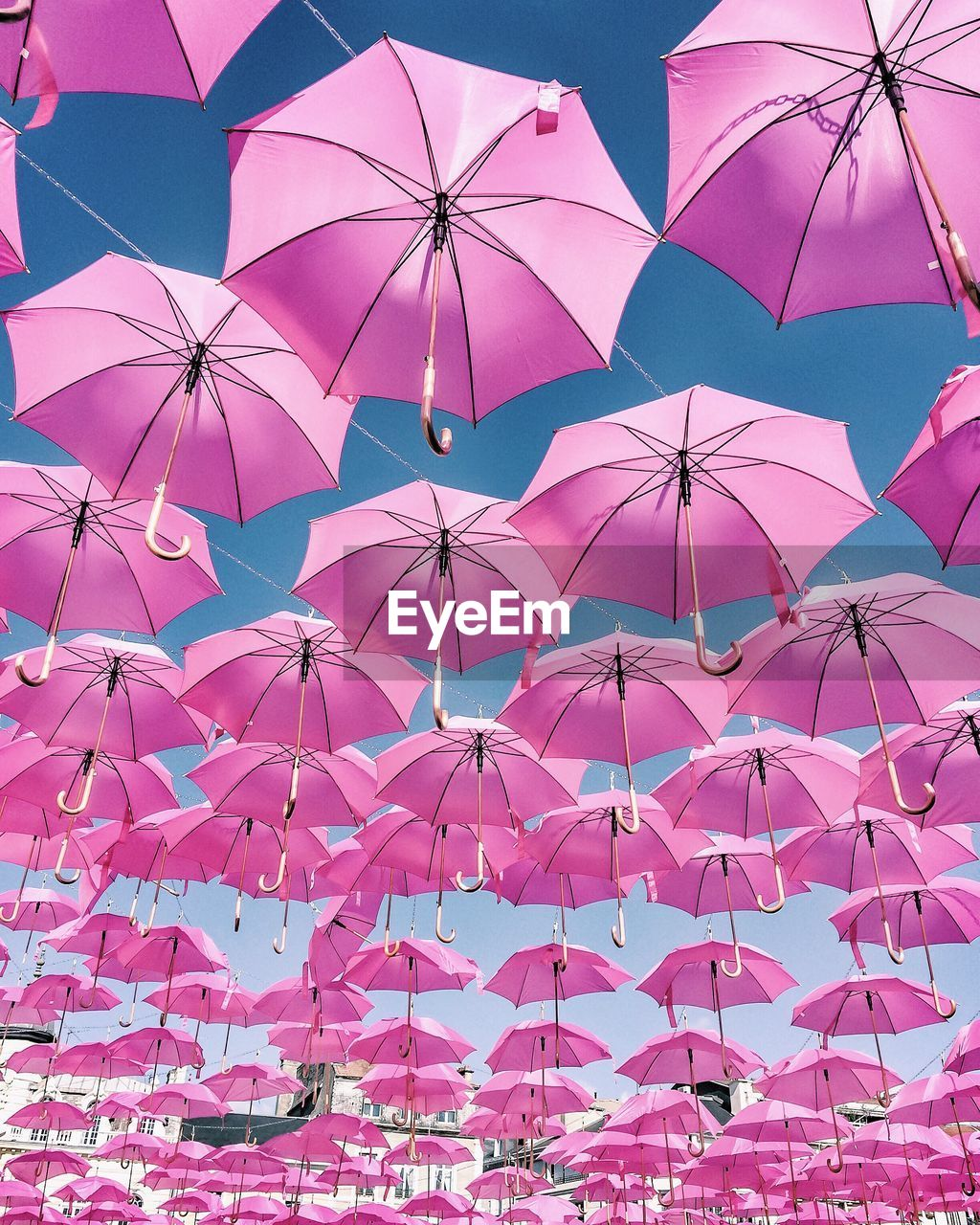 Low Angle View Of Pink Umbrellas Handing Against Sky