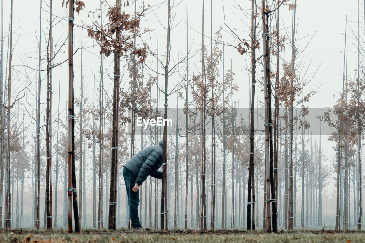 Man Standing By Bare Trees In Forest Against Sky