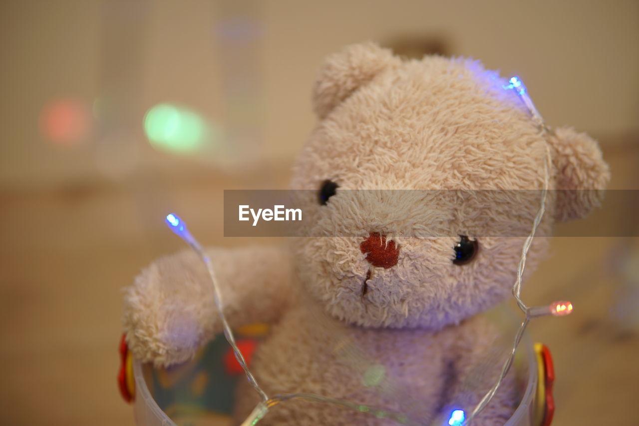 stuffed toy, toy, teddy bear, close-up, representation, animal representation, focus on foreground, childhood, softness, indoors, illuminated, art and craft, still life, animal, toy animal, creativity, mammal, animal themes, celebration