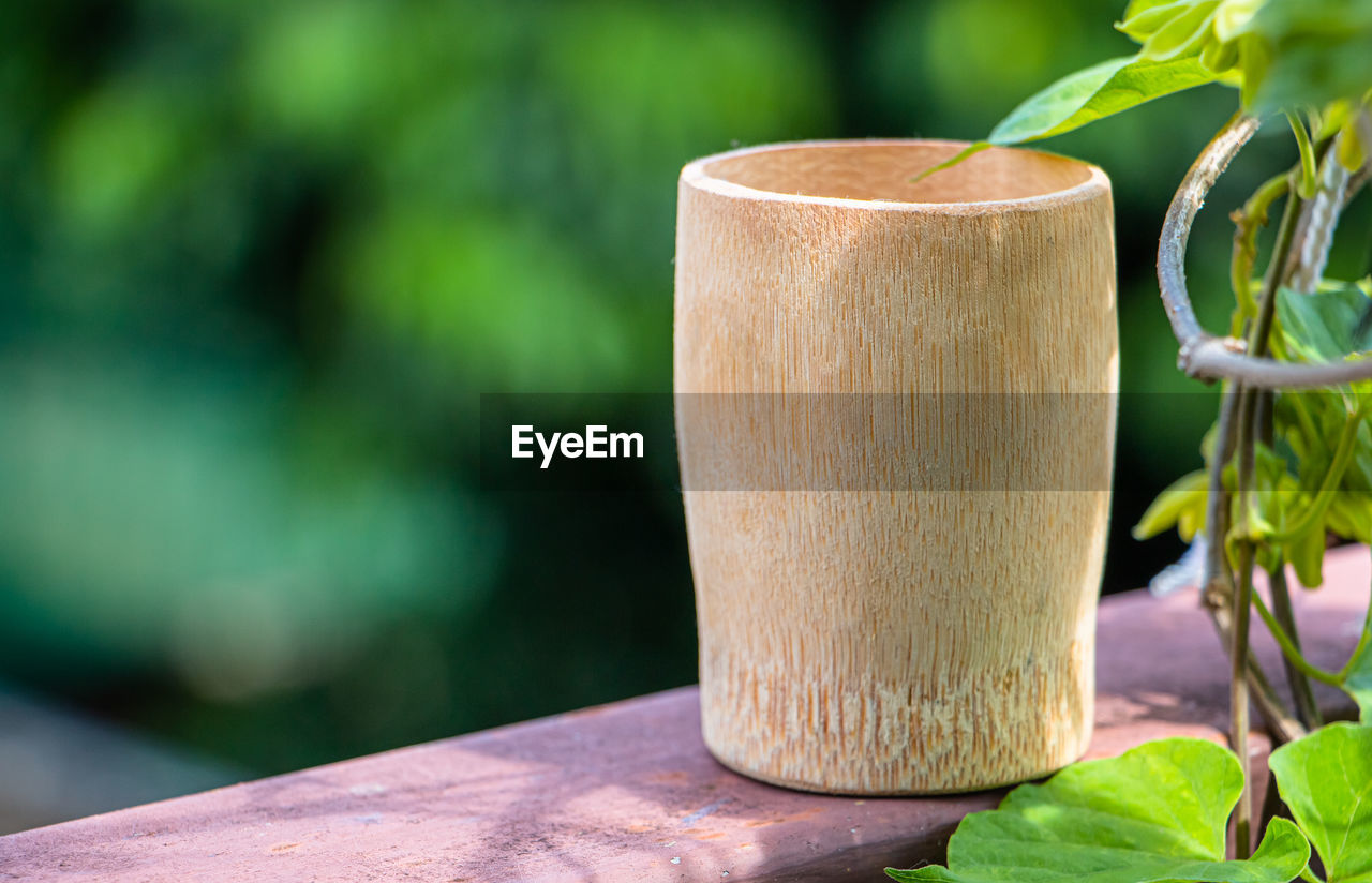 focus on foreground, plant, leaf, plant part, wood - material, close-up, no people, nature, day, green color, growth, table, outdoors, beauty in nature, sunlight, still life, potted plant, selective focus, single object, freshness, bamboo - plant