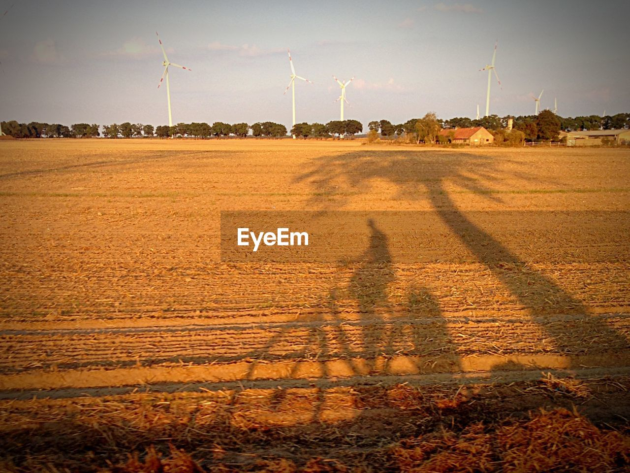 Shadow of person riding bicycle on field