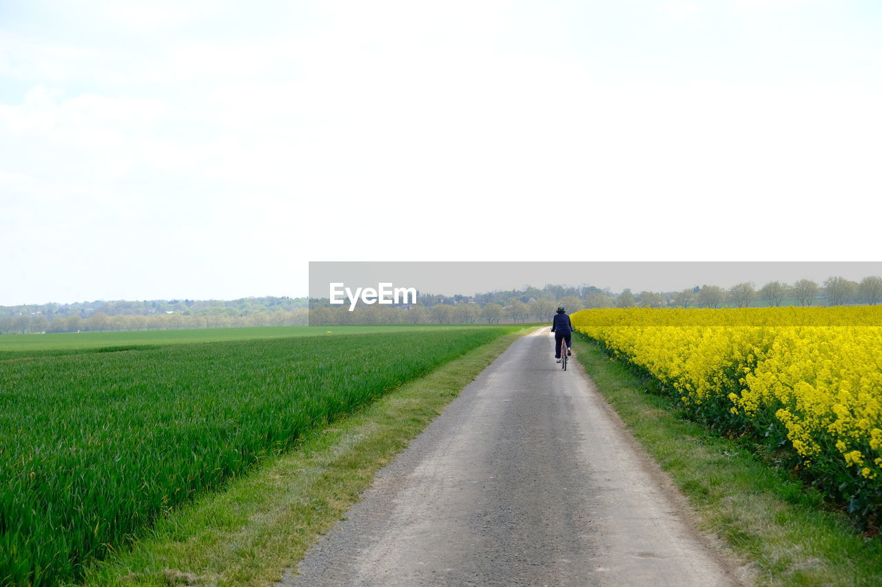 REAR VIEW OF PERSON WALKING ON ROAD AMIDST AGRICULTURAL FIELD
