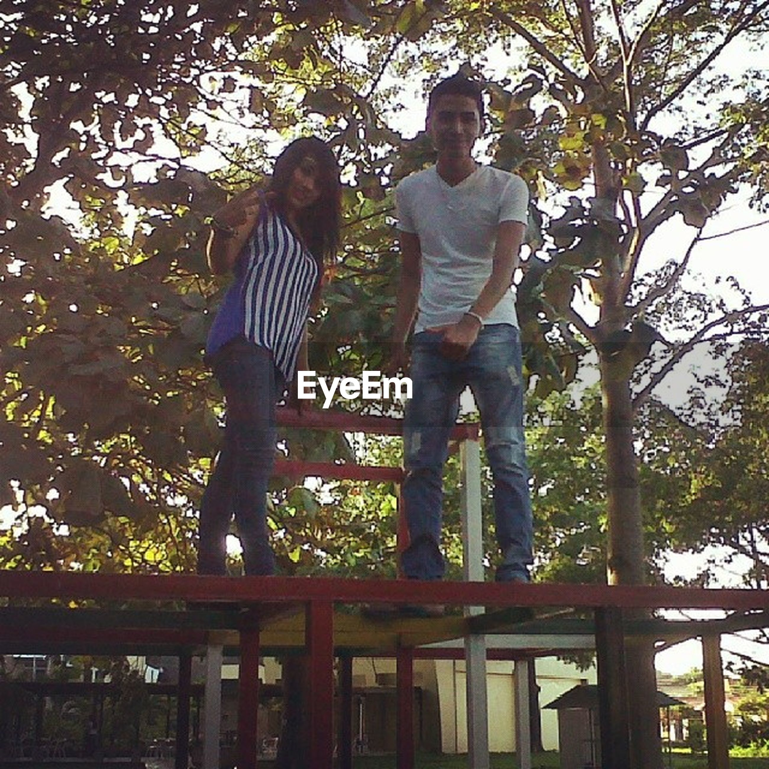 tree, lifestyles, leisure activity, full length, casual clothing, standing, young adult, low angle view, person, three quarter length, railing, park - man made space, young women, branch, front view, day, outdoors, wood - material
