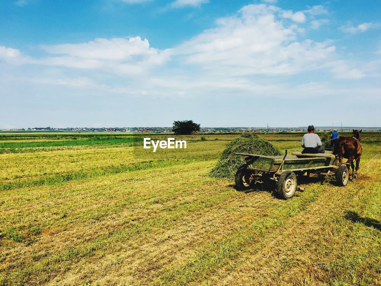 field, land, landscape, agriculture, sky, environment, plant, rural scene, mode of transportation, transportation, agricultural machinery, grass, land vehicle, farm, day, nature, beauty in nature, agricultural equipment, growth, cloud - sky, farmer, outdoors