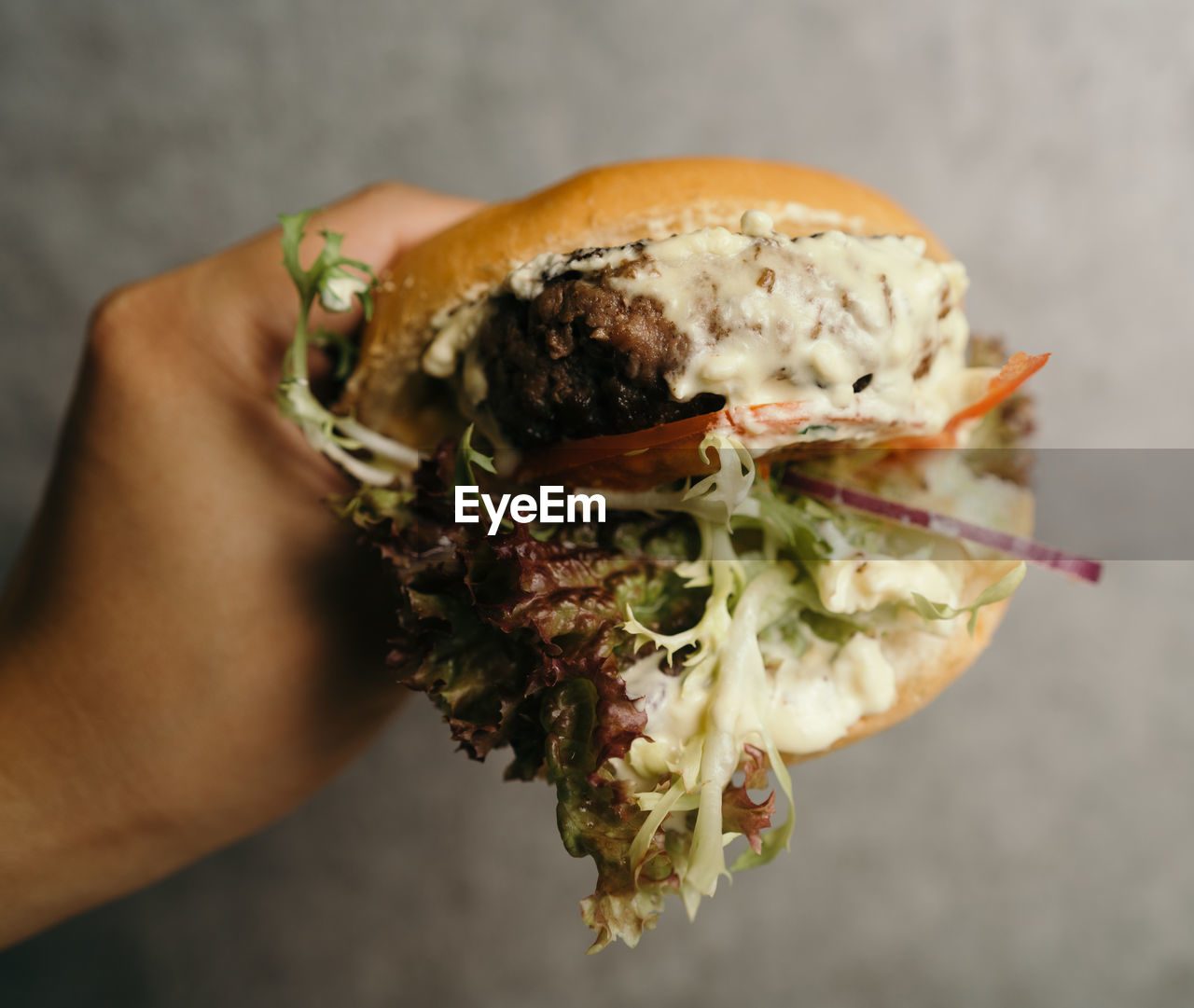 human hand, hand, one person, holding, human body part, real people, food, food and drink, freshness, close-up, unrecognizable person, ready-to-eat, lifestyles, indoors, focus on foreground, body part, personal perspective, sandwich, high angle view, finger, human limb