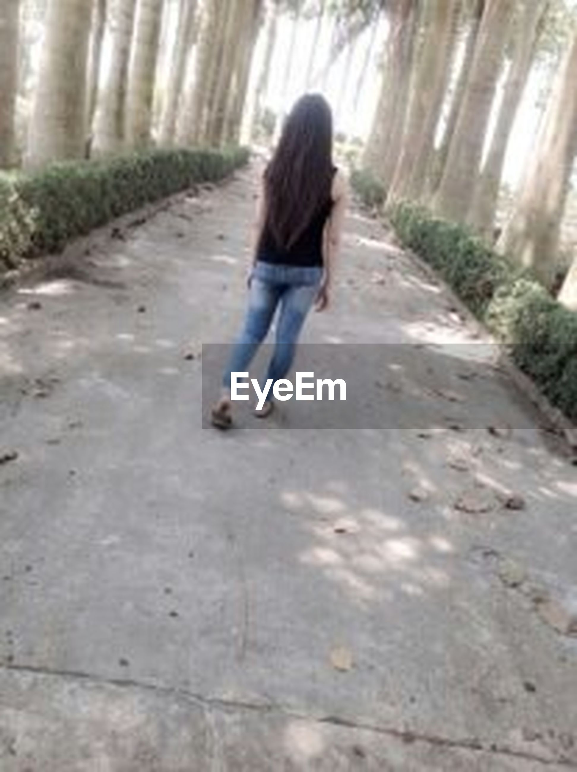 full length, lifestyles, casual clothing, rear view, leisure activity, walking, childhood, the way forward, girls, boys, elementary age, person, standing, day, innocence, outdoors, footpath