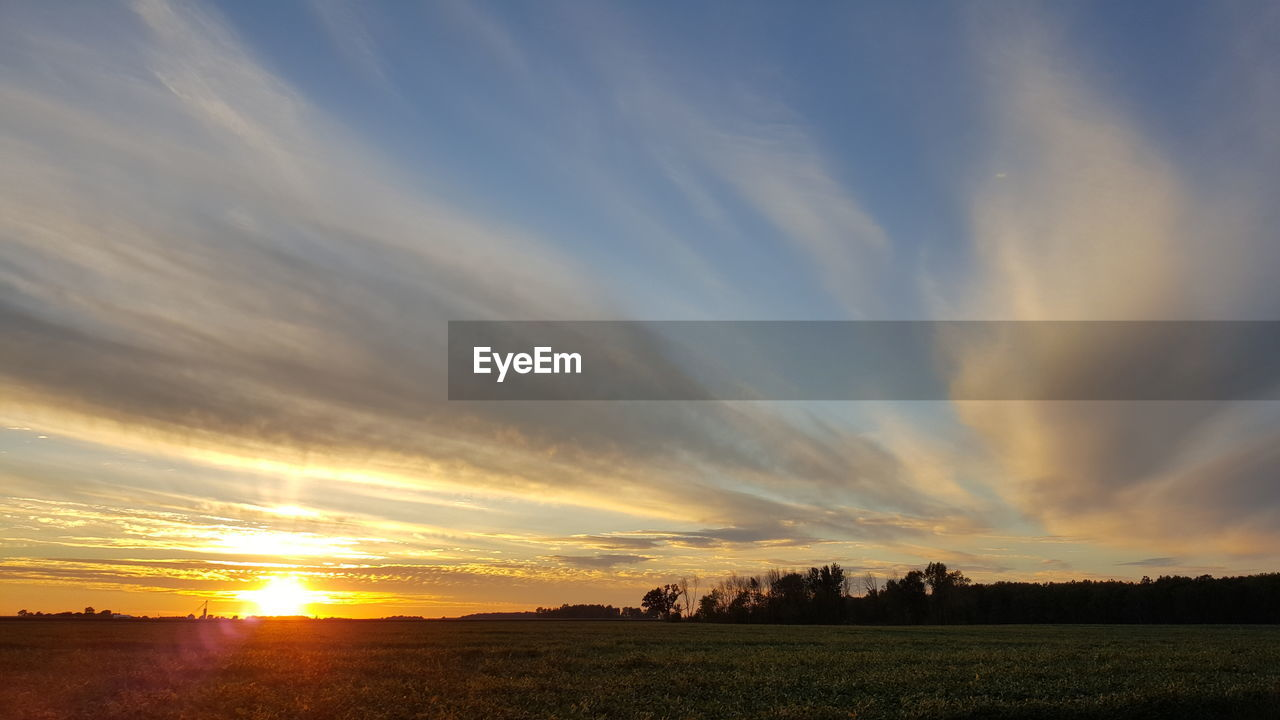 sunset, scenics, field, beauty in nature, tranquil scene, tranquility, landscape, nature, sky, orange color, cloud - sky, idyllic, agriculture, no people, rural scene, sun, outdoors, tree, day