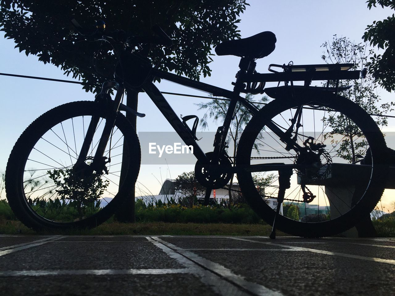 tree, bicycle, transportation, plant, sky, nature, land vehicle, mode of transportation, day, silhouette, road, outdoors, no people, clear sky, street, city, stationary, wheel, architecture, spoke