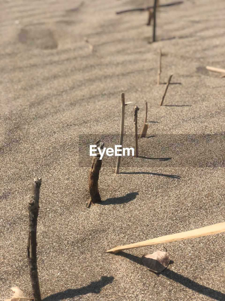 high angle view, shadow, sunlight, day, sand, land, nature, no people, beach, outdoors, creativity, human representation, focus on foreground, close-up, art and craft, representation, text, direction, textured