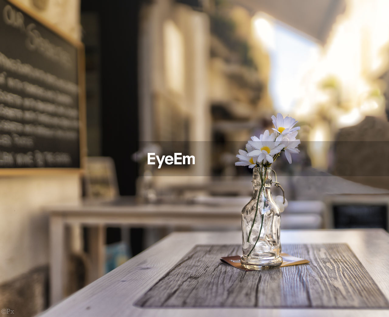 table, wood - material, flowering plant, flower, plant, no people, vase, nature, indoors, selective focus, focus on foreground, freshness, still life, day, close-up, transparent, decoration, beauty in nature, restaurant, flower head, tray, silver colored