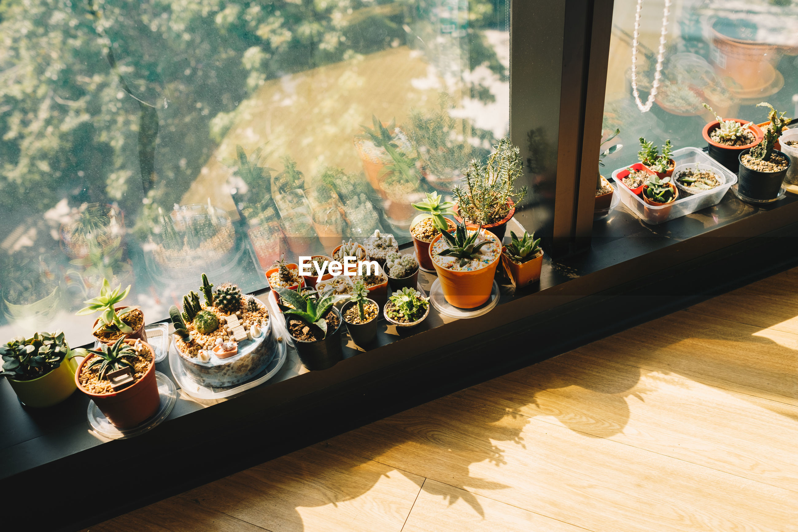 High angle view of food on window sill