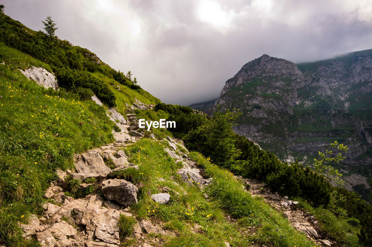 sky, cloud - sky, mountain, beauty in nature, scenics - nature, tranquil scene, plant, tranquility, no people, nature, non-urban scene, environment, rock, landscape, day, mountain range, solid, idyllic, green color, rock - object, outdoors