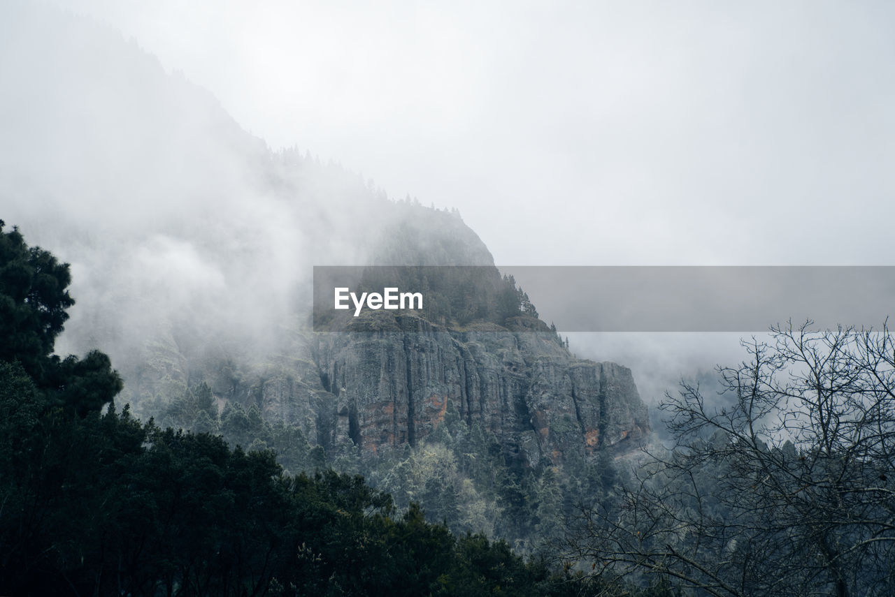 tree, mountain, plant, sky, nature, tranquil scene, no people, scenics - nature, tranquility, environment, beauty in nature, fog, land, day, non-urban scene, landscape, cloud - sky, mountain range, building exterior, outdoors, formation