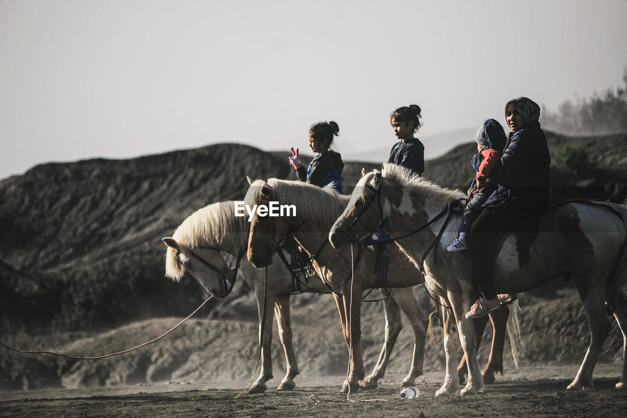 GROUP OF PEOPLE RIDING HORSES ON LAND