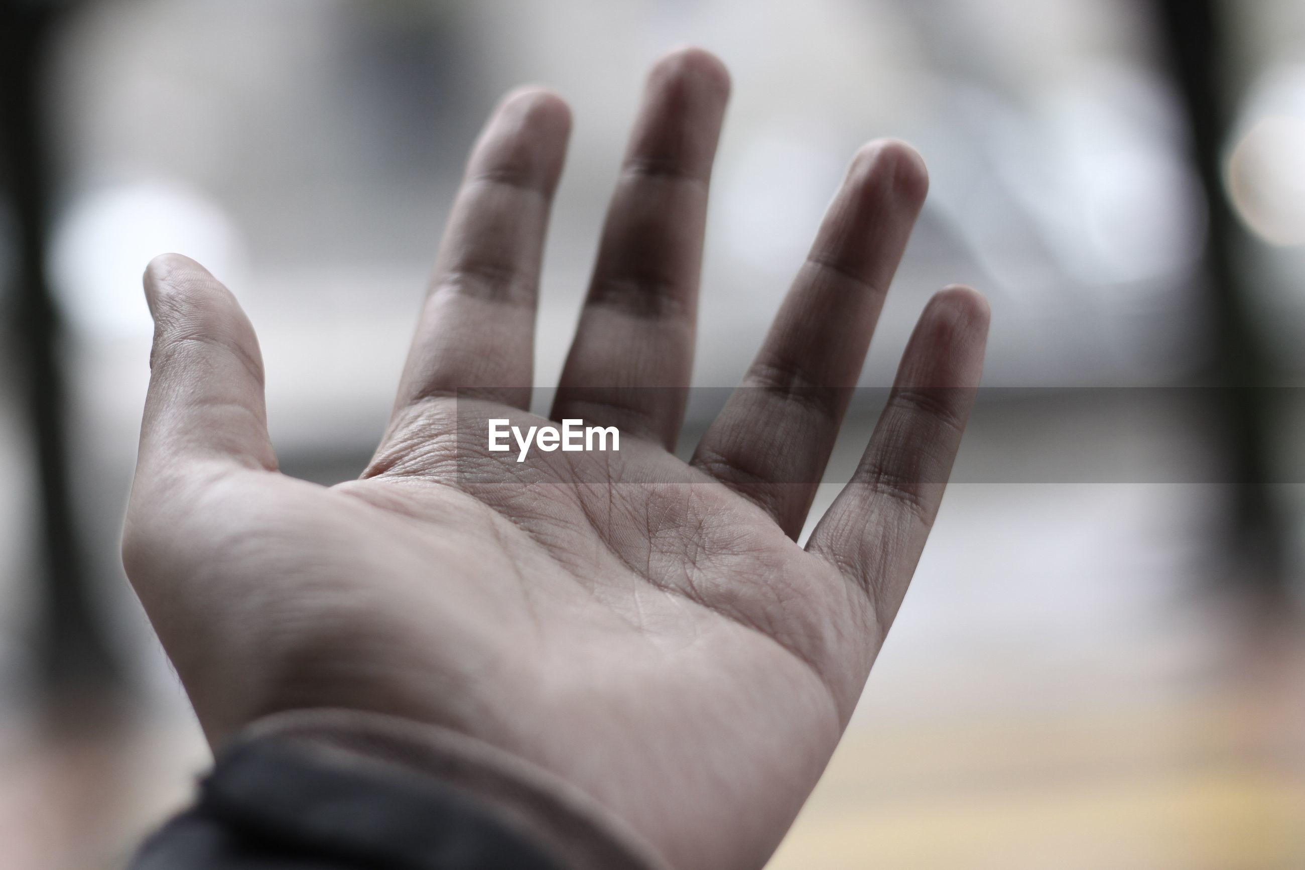 Close-up of man hand