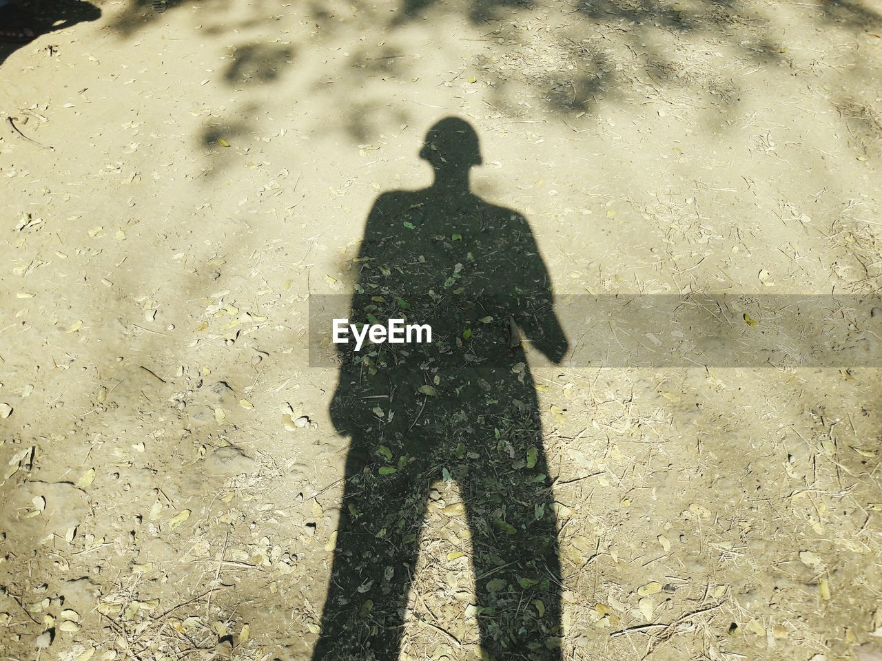 shadow, focus on shadow, real people, sunlight, high angle view, standing, one person, men, field, outdoors, day, people