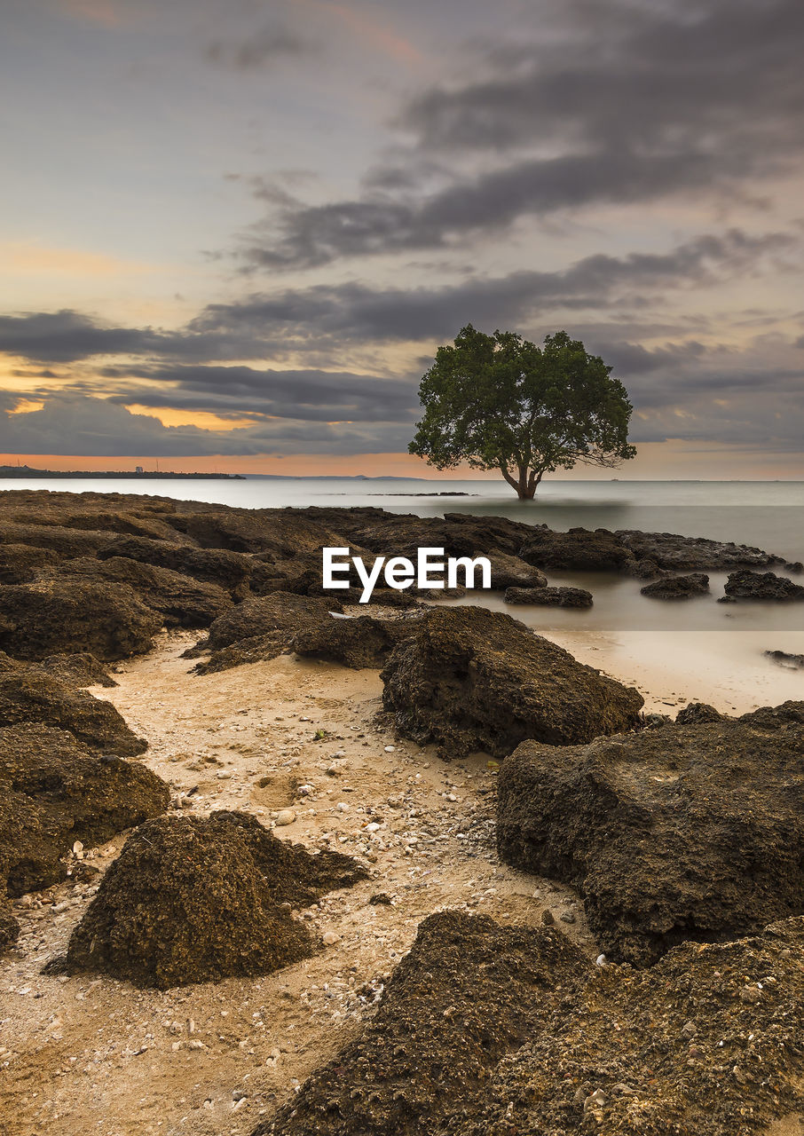 sky, cloud - sky, beauty in nature, sunset, water, sea, beach, scenics - nature, tranquility, plant, tranquil scene, land, tree, nature, rock, rock - object, no people, solid, non-urban scene, horizon over water, outdoors