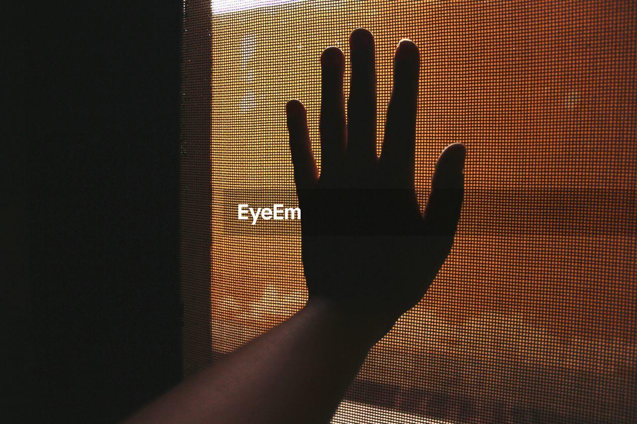 Silhouette Hand Touching Mesh Window
