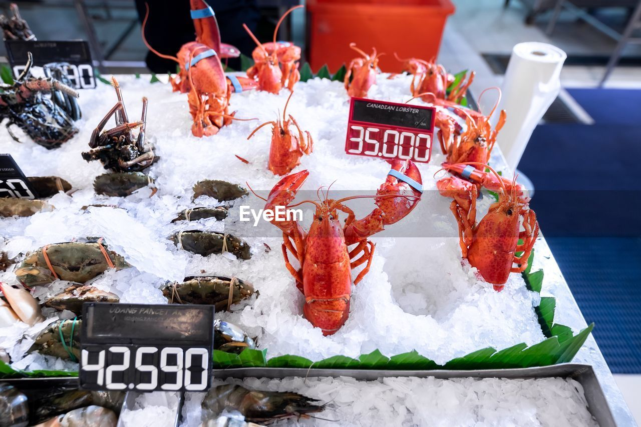cold temperature, seafood, for sale, food, market, food and drink, fish, freshness, retail, wellbeing, healthy eating, price tag, text, ice, fish market, communication, market stall, animal, vertebrate, raw food, no people, fishing industry, sale, retail display