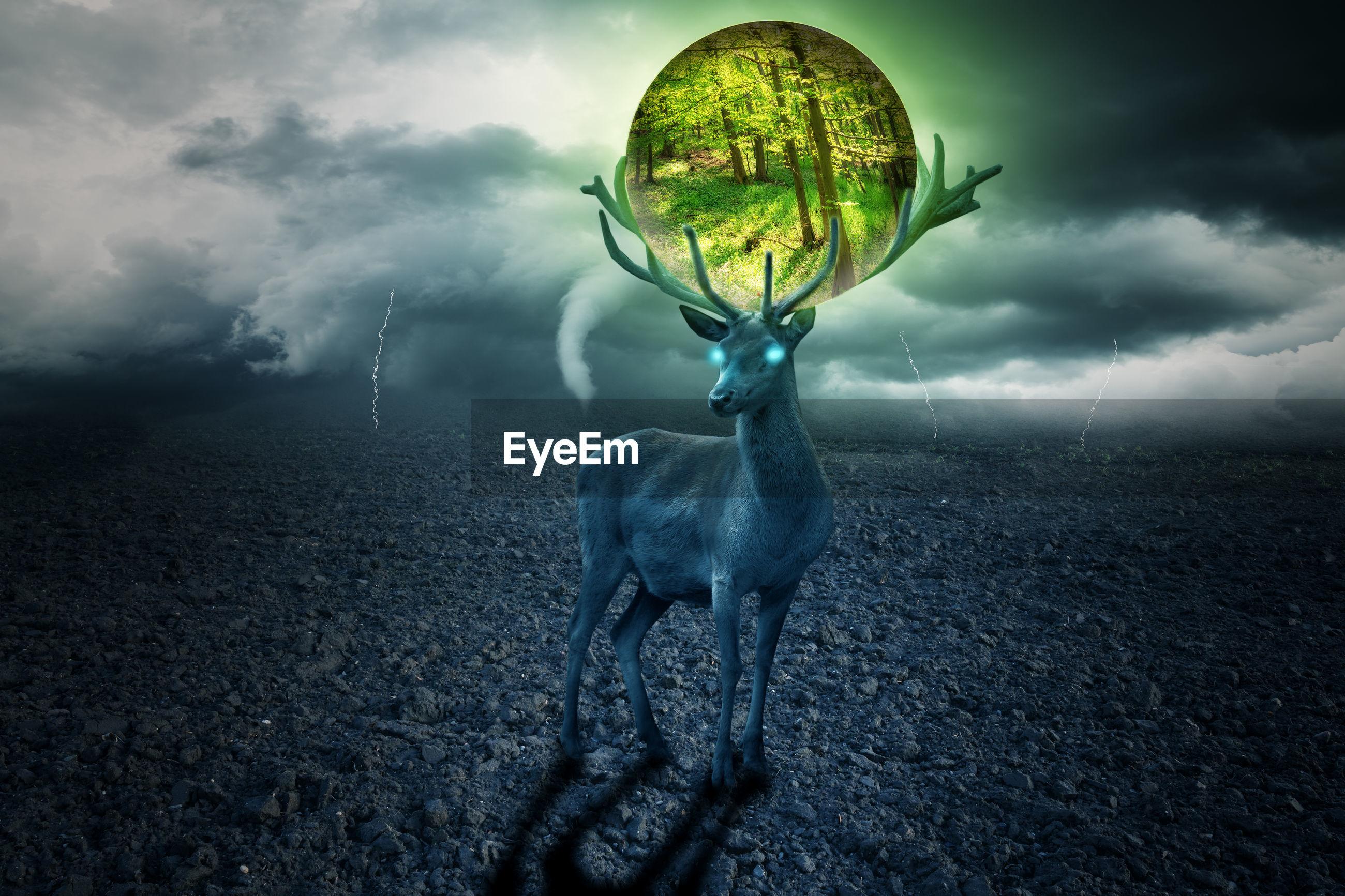 Digital composite image of deer standing on field