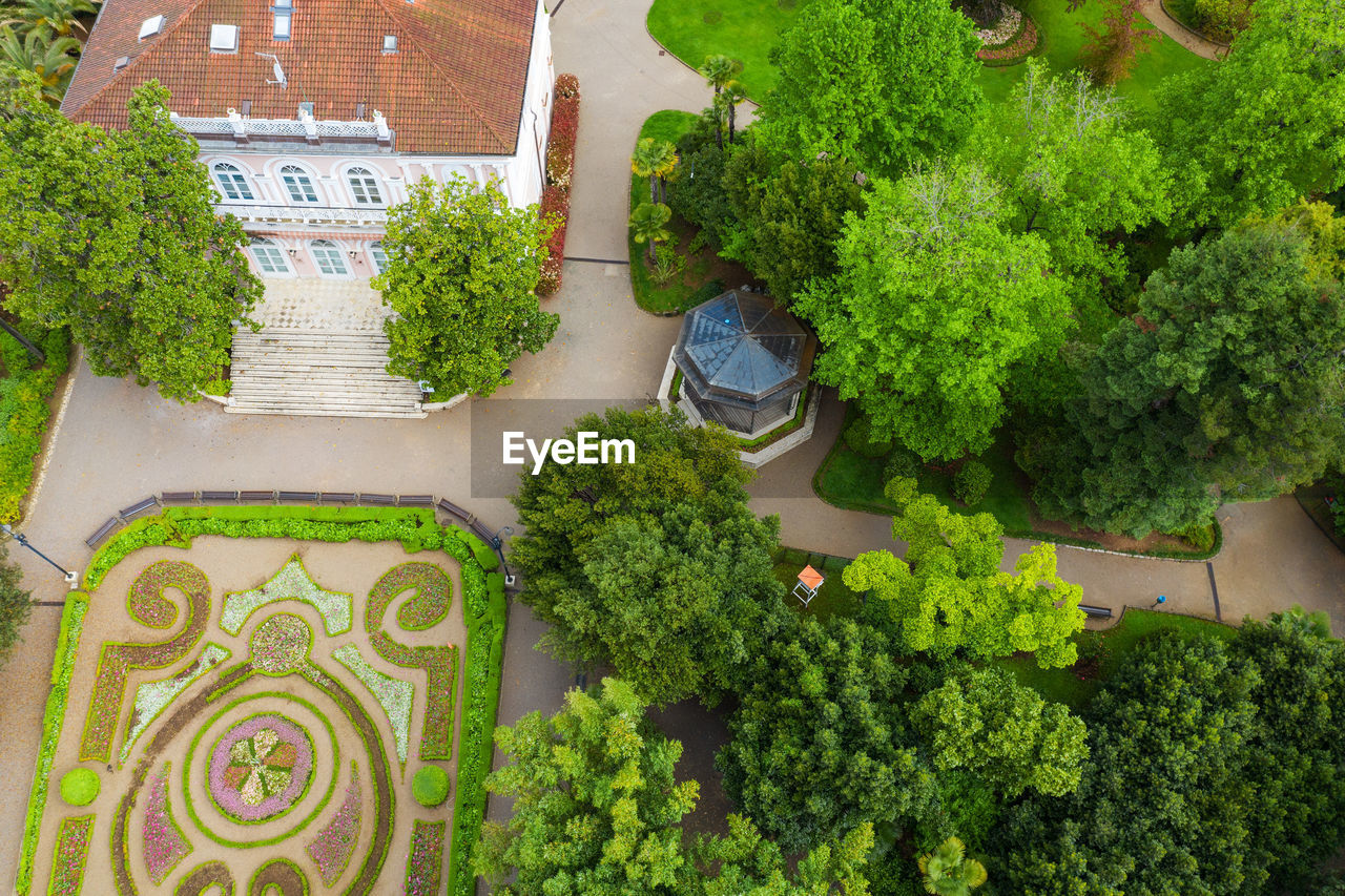 HIGH ANGLE VIEW OF PLANTS AND TREES AND BUILDING