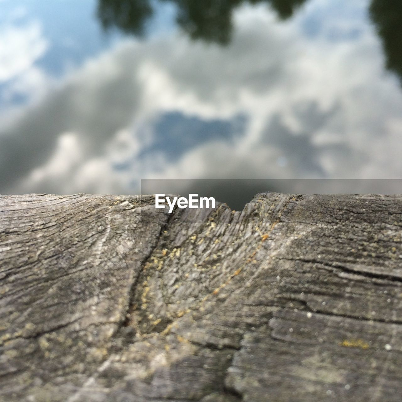 textured, rough, day, no people, outdoors, wood - material, nature, close-up, sky, tree, beauty in nature